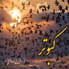دانلود رمان کبوتر برای موبایل و تبلت و کامپیوتر