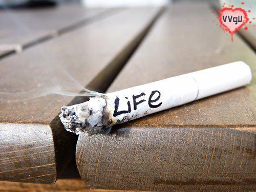 X لاو77 X سایت عاشقانه X دلنوشته X سیگار X سیگار و تنهایی X سیگار عاشقانه X زندگی با سیگار X علامت پیروزی X دلنوشته سیگار X متن های زیبا X متن هایی با کلمات سیگار X بسلامتی سیگارم X عکس سیگار عاشقانه X 77لاو