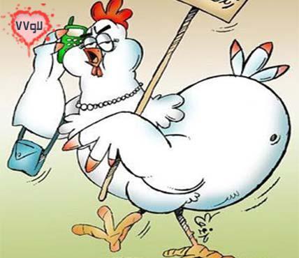 اس ام اس ,اس ام اس جدید خنده دار جالب مرغ, گرانی مرغ فروشی, خاستگار ,اس ام اس جالب مرغ, اس ام اس خنده دار مرغ ,اس ام اس جالب گرانی, اس ام اس خنده دار گرانی ,اس ام اس جالب گرانی مرغ, اس ام اس خنده دار گرانی مرغ ,جدیدترین اس ام اس, جدیدترین اس ام اس گرانی, جدیدترین اس ام اس مرغ, اس ام اس های جدید, sms,