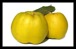 خواص و فواید سرشار میوه به