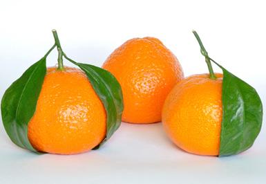 خواص و فواید دارویی نارنگی