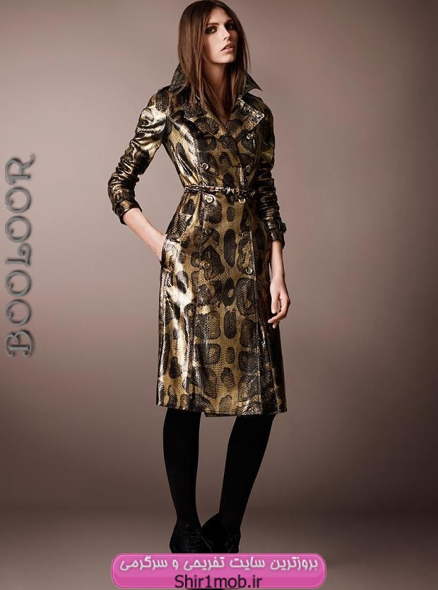 مدل لباس مجلسی،مدل های 2013 لباس مجلسی،مدل جدید لباس مجلسی 1392