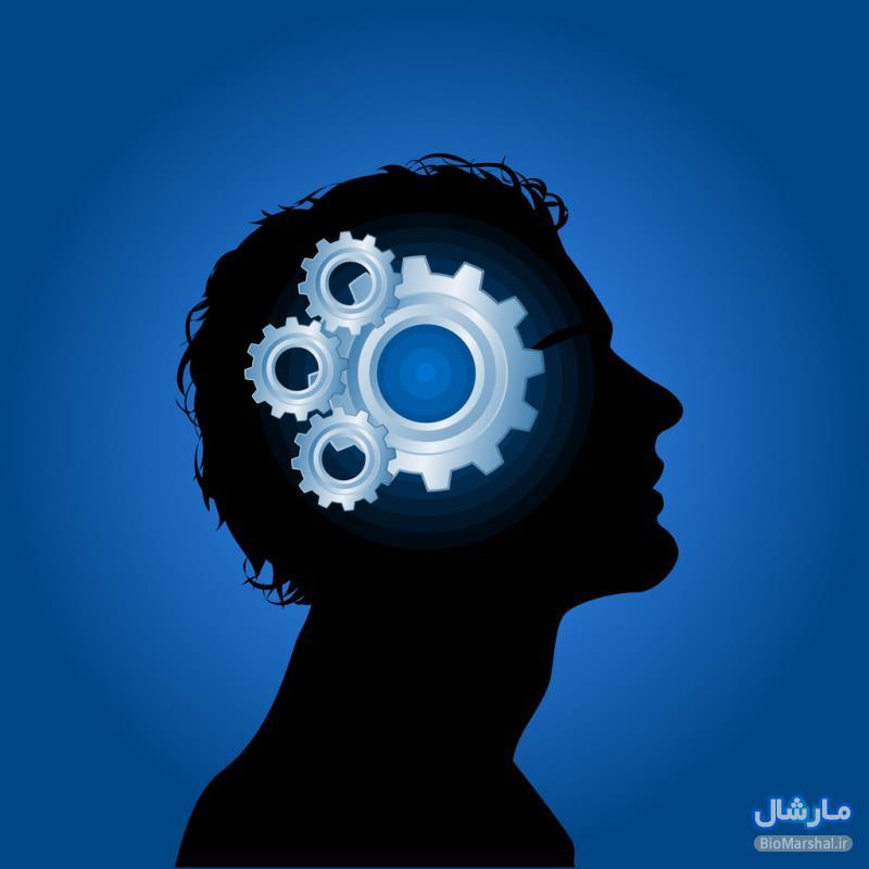 معرفی مجموعه بهترین تست های روانشناسی