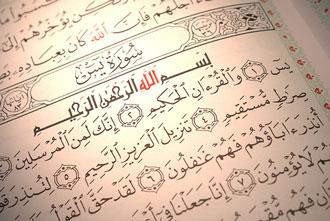 این ختم را هدیه به امام رضا(ع) کنید تا حاجت بگیرید