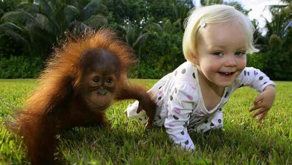 روابط دوستی بین انسان و حیوانات