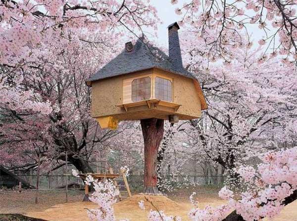 خانههاي درختي زيبا و دوستداشتني