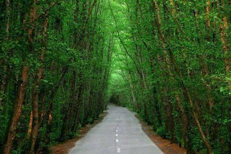 طبیعت زیبای شگفت انگیز