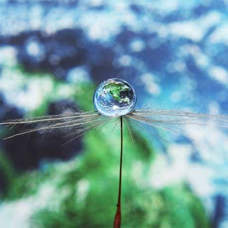 عکس هايي از قطرات کوچک آب