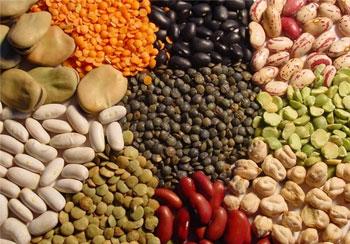 مواد غذایی جهت افزایش حافظه و هوش