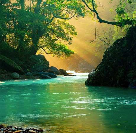 دنیای زیبا