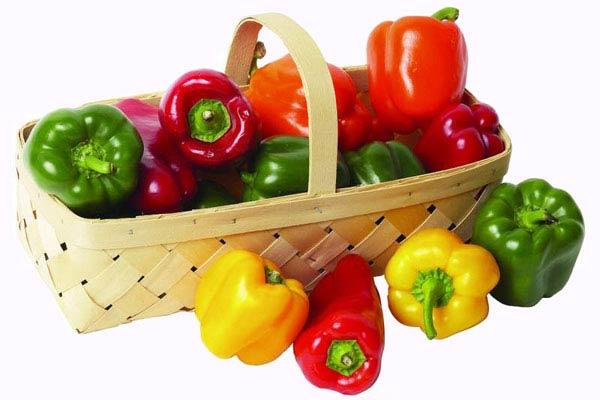 مواد غذایی که پوست را شاداب میکند
