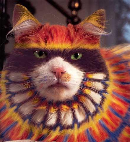 رنگ کردن گربه گربه