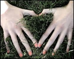 شخصیت شناسی از روی انگشتان