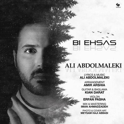 اهنگ جدید علی عبدالمالکی به نام بی احساس