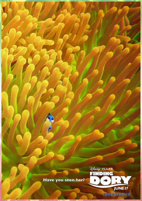 (Finding Dory (2016