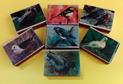 پرنده (7).jpg (400×273)