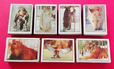 گربه (3).jpg (400×244)