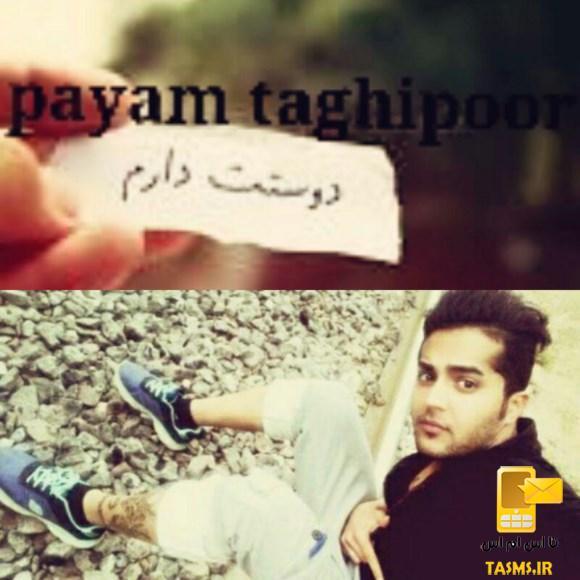 آهنگ جدید پیام تقی پور به نام دوست دارم