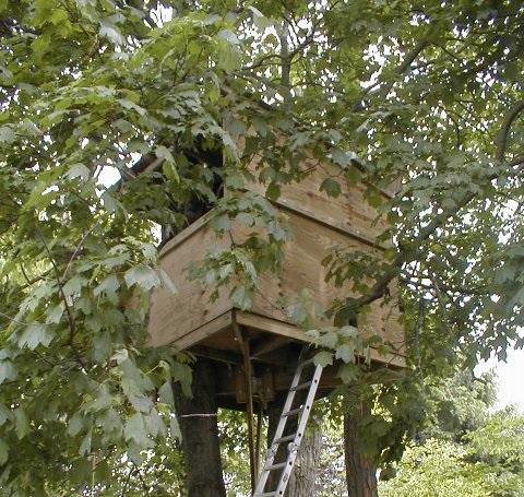آموزش تصویری ساخت کلبه درختی