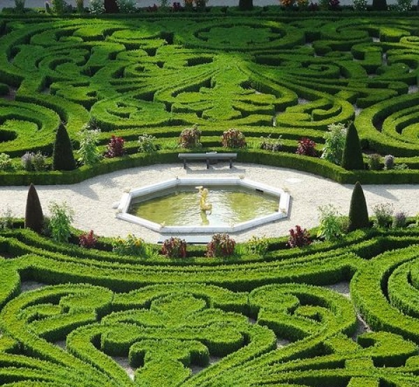 Topiary / توپیاری