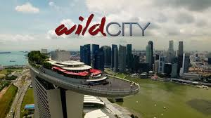 دانلود مستند ۲۰۱۶ David Attenboroughs Wild City