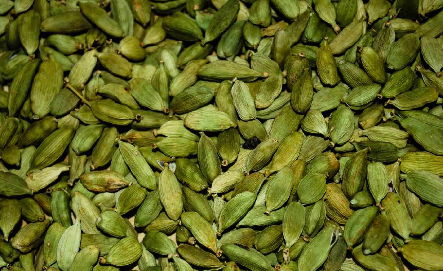 گیاهان دارویی/Cardamom هل