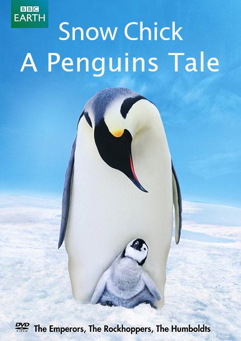 مستند Snow Chick A Penguins Tale 2015