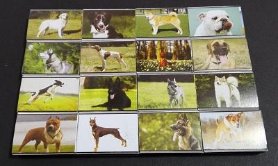سگها (3).jpg (400×239)