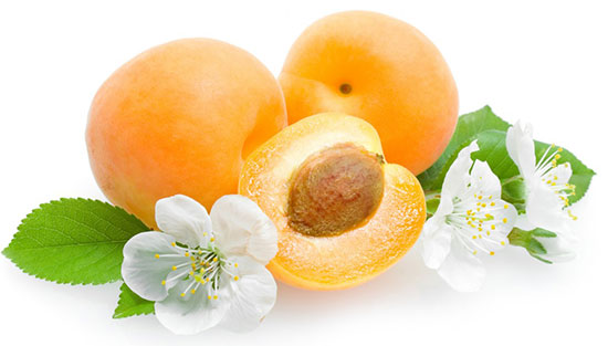 خواص زردآلو : Apricot