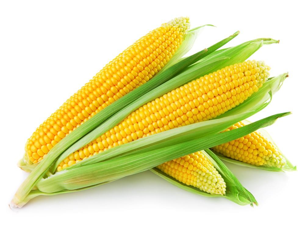خواص ذرت : Corn