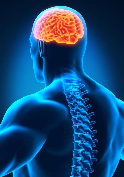 بیماری آبسه مغزي يا اپيدورال : brain or epidural abscess