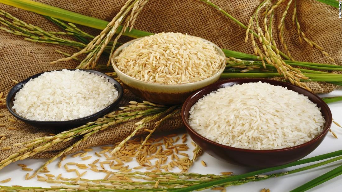 ریشه برنج سطحی و افشان بوده و حداکثر در عمق ۲۰ تا ۲۵ سانتیمتری خاک نفوذ مینماید. در این گیاه بغیر از ریشههای جنینی از محل گرهها نیز ریشه بوجود میآید. هر چقدر رشد برگها بیشتر باشد بر رشد ریشهها هم افزوده شده و در نتیجه میتوان گفت که با افزایش تعداد پنجهها تعداد برگی بیشتر شده و در نتیجه رشد ریشهها نیز زیادتر میگردد.  در زمان بازشدن گلها و به خوشه رفتن برنج رشد ریشه حداکثر مقدار خود را دارد.
