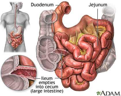 اسهال حاد  Diarrhea acute عوارض احتمالي: درمان:اصول كلي:داروها...