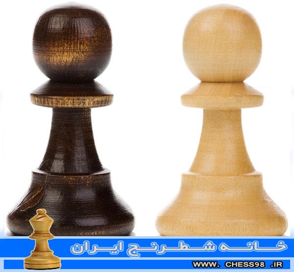 آموزش حرفه ای شطرنج | خانه شطرنج