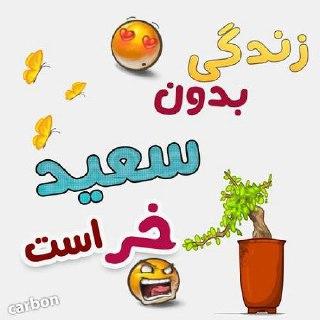 مجموعه عظیم لوگو اسم سعید