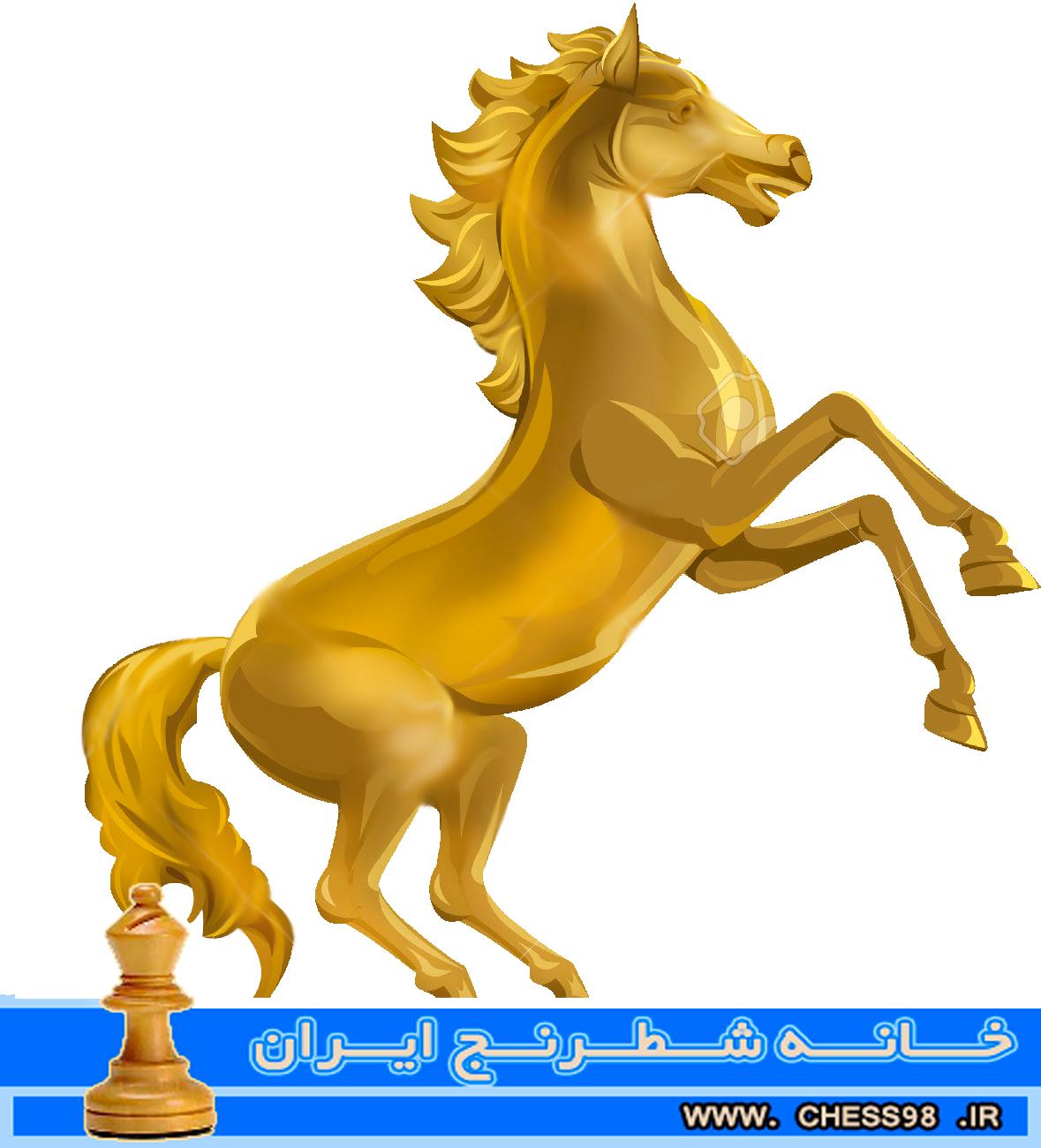 رقابت های اسب زرین شطرنج + نتایج