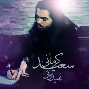 دانلود آهنگ جدید سعید کرمانی نمیدونی