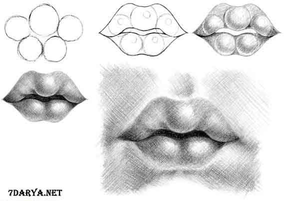 آموزش طراحی لب سیاه قلم4