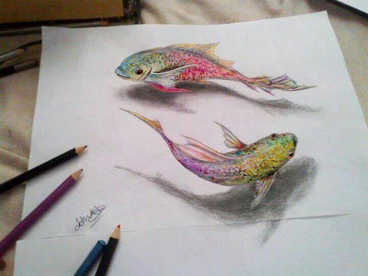 مدل نقاشی مداد رنگی4