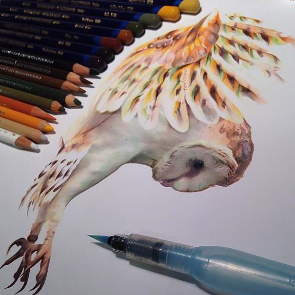 مدل نقاشی مداد رنگی1