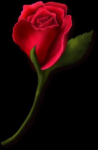 استیکر های تلگرام گل