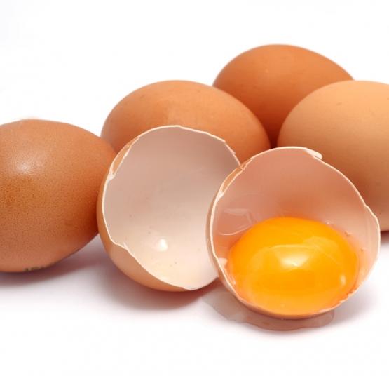 اثر روی و منگنز بر کیفیت پوسته تخم مرغ های تجاری