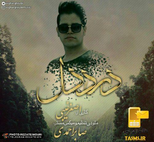 آهنگ جدید اصغر غیبی به نام درد دل