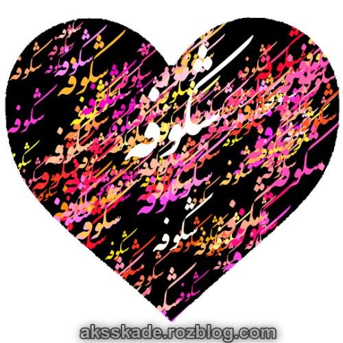 طرح قلبی اسم شکوفه