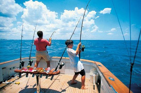 سیستم MCS برای مدیریت ماهیگیری