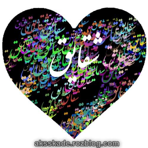 طرح قلبی اسم شقایق - عکس کده
