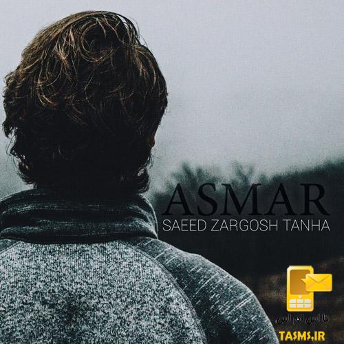 دانلود آهنگ جدید سعید زرگوش تنها به نام ئهسمهر | سعید زرگوش
