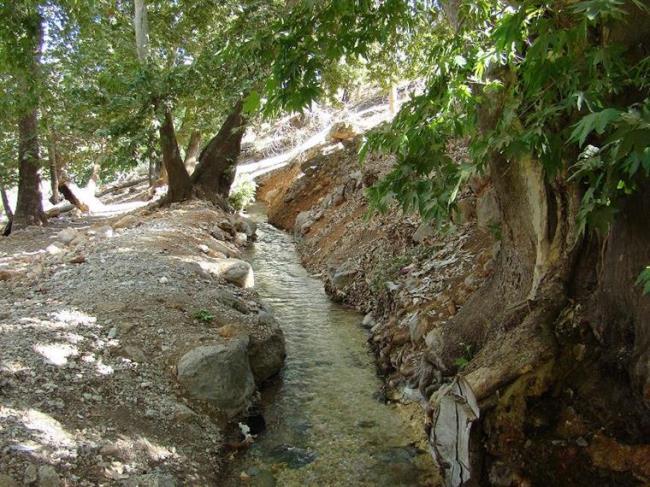 گردشگاه آب بند داراب