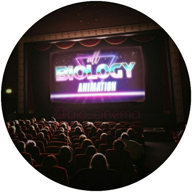 کانال تلگرام بیو سینما