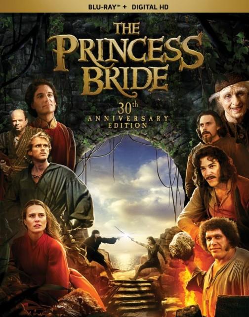 دریافت فیلم  عروس خانه شاهزاده 1987  دوبله فارسی و سانسور